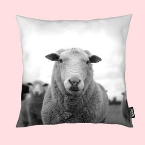 The Sheep - Kissen