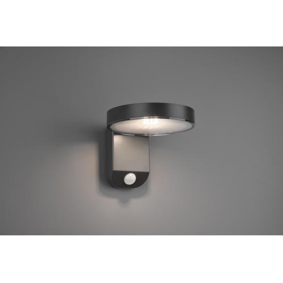 Trio LED-Außenwandleuchte Posadas mit Solarmodul Anthrazit