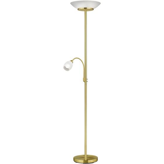 TRIO Leuchten,Deckenfluter GERRY 1 St., 2 -flg. /, Ø34 cm / H:180 goldfarben Deckenfluter Stehleuchten Lampen Leuchten
