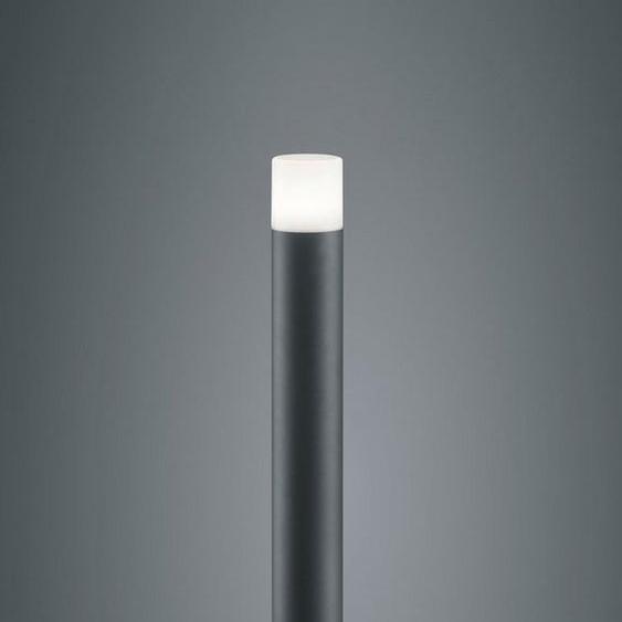 TRIO Leuchten Stehlampe »Hoosic«