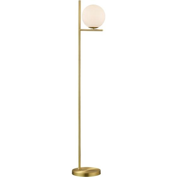 TRIO Leuchten,Stehlampe PURE 1 St., -flg. / Ø20 cm, H:150 cm goldfarben Standleuchten Stehleuchten Lampen Leuchten