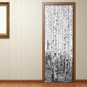 Türaufkleber schwarz weiß Birke Birkenwald Baum Bäume Stamm Wald Landschaft Tür Folie Bild Türposter Türfolie Türtapete Türbild selbstklebend bunt Druck Aufkleber sticker 15B338, Türgrösse:67cmx200cm
