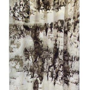 Vhg Vorhang »Birke«, H/B 160/145 cm, grau
