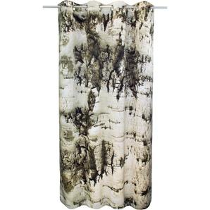 Vhg Vorhang »Birke«, H/B 180/145 cm, grau