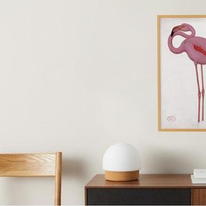 Vintage Flamingo from the Natural History Museum, gerahmter Kunstdruck (A2), Mehrfarbig und Eiche