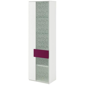 Vitrine | rosa/pink | 50 cm | 179,6 cm | 36,1 cm | Möbel Kraft