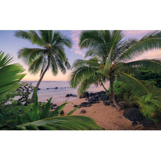 Vlies Fototapete Hawaiian Dreams