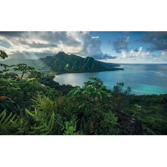 Vlies Fototapete Jurassic Island