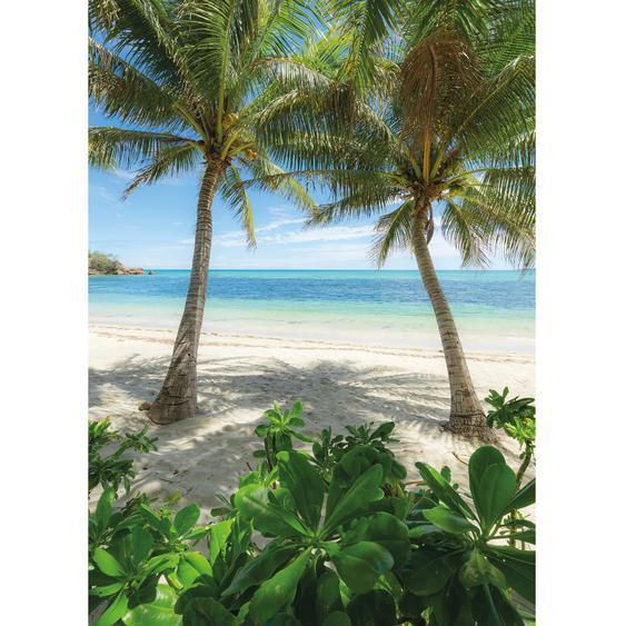 Vlies Fototapete Palmy Beach