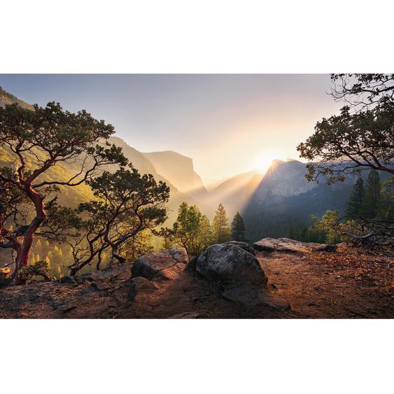 Vlies Fototapete Yosemites Secret