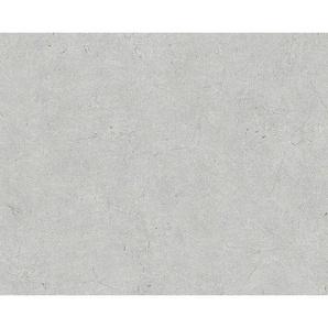 XXXL: Vliestapete, Hellgrau, B/H 53 1005