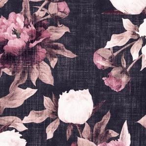 Vorhang, heine home, Ösen (1 Stück)