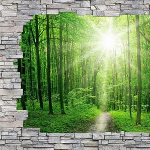 Wall-Art Fototapete »Sunny Forest Mauer«