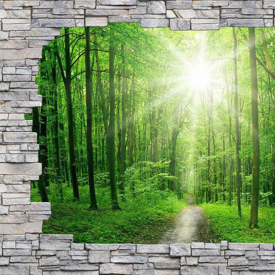 Wall-Art Fototapete Sunny Forest Mauer B/L: 3,84 m x 2,6 grün Fototapeten Tapeten Bauen Renovieren