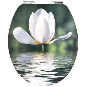 Cornat WC-Sitz »Art of Acryl«, Mit Absenkautomatik