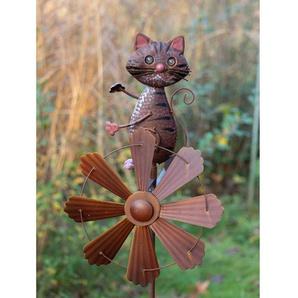 Windrad Windham Cat