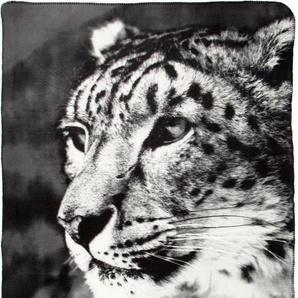 Wohndecke »Leopard«, BIEDERLACK, mit Leopardenmotiv