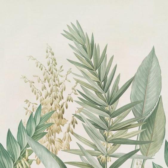 WOHNIDEE-Kollektion Fototapete »Palmlilie«, (4 St)