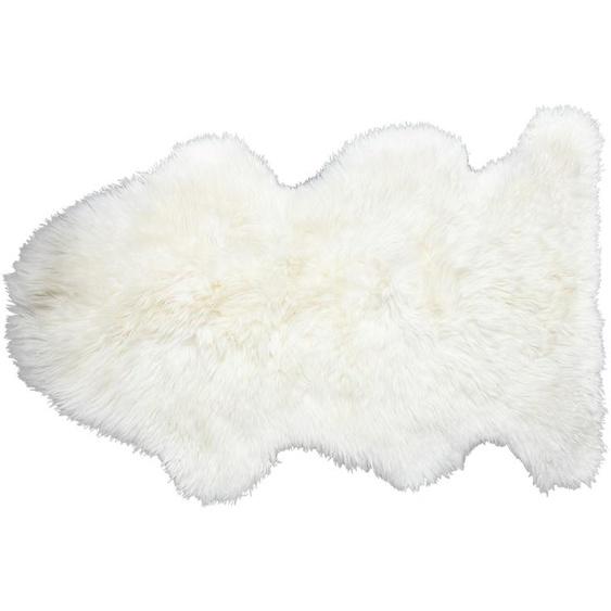 Wollschaf-Lammfell - weiß - Schaffell   Möbel Kraft