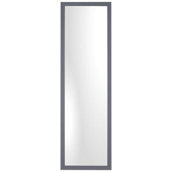 Xora Wandspiegel Grau , Glas , 45x177x2.5 cm
