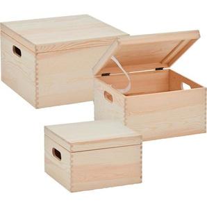 Zeller Aufbewahrungsboxen, 3-tlg.